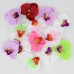 Орхидеи, лилии