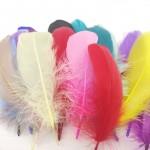 Перья цветные
